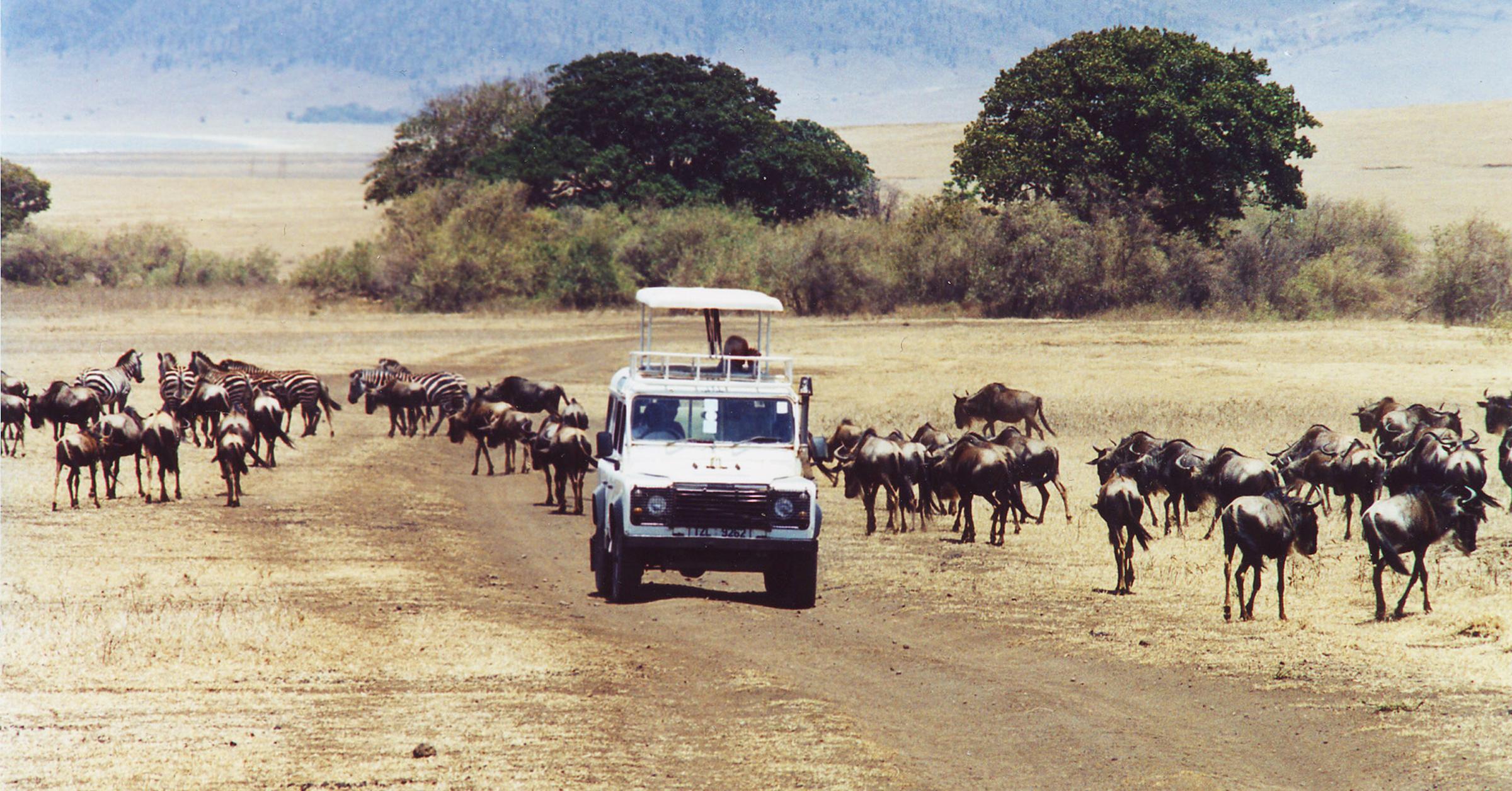 trilogia-africana-viaggi-in-africa