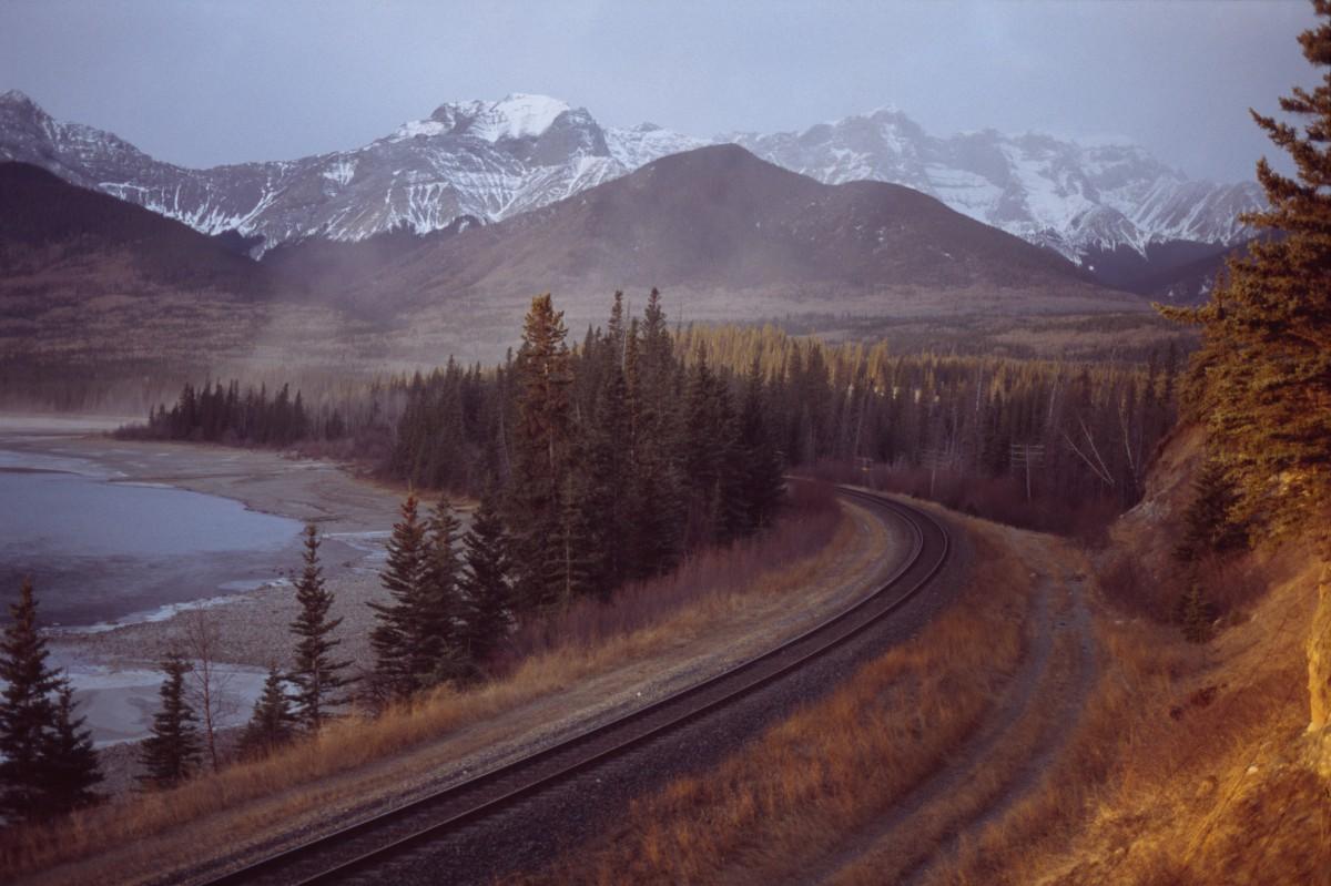 viaggi-in-canada-ricerca-fauna-grande-ovest