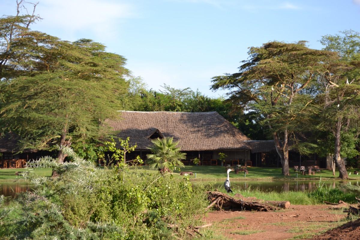 camping-safari-tenda-africa