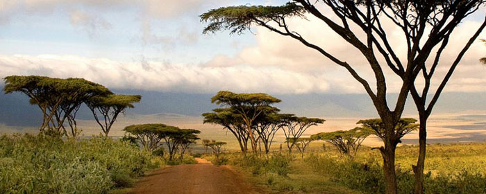 viaggio-su-misura-tanzania