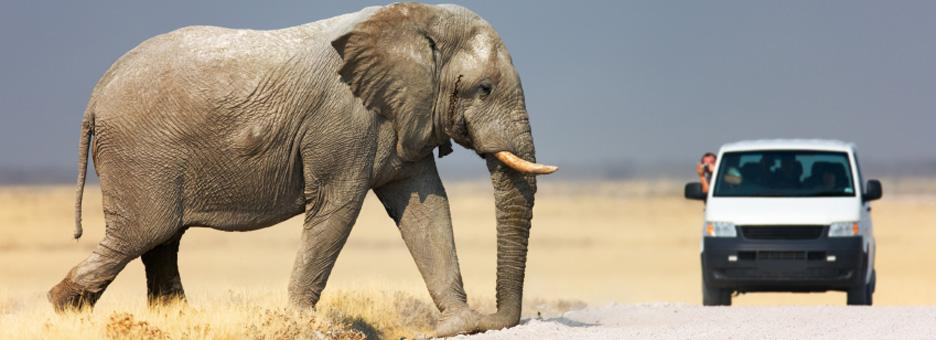 come-fare-un-self-drive-namibia