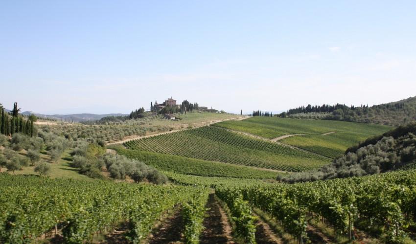 strade-del-vino-toscana